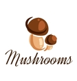 Fresh forest mushrooms vector image vector image