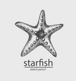 starfish animal a marine resident sketch style vector image