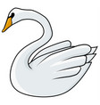 swan drawing colored vector image