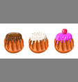 sweet cakes with various toppings vector image