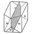 symmetry plane vintage vector image vector image