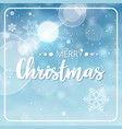 wish lettering greeting card design merry vector image