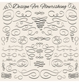 vintage calligraphic design elements and page vector image