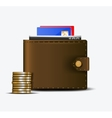 The wallet vector image