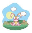 bunny sitting outdoors cartoon vector image