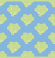 cabbage seamless pattern vector image