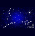 constellation of pisces in a starry blue sky vector image