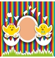 cute little chicken birthday greeting card vector image vector image