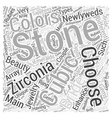 Newlyweds Choose Cubic Zirconia Jewelry Word Cloud vector image vector image