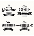 Retro vintage badges and labels vector image vector image