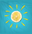 summer lemon in sun shape on blue background vector image vector image