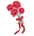carnation bouquet with a red ribbon vector image vector image