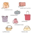 Fashion bags icon vector image