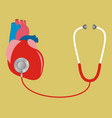heart with stethoscope test check internal vector image vector image