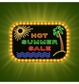 Hot summer sale Retro neon light Vintage frame vector image
