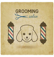 pet grooming salon logo design vintage background vector image