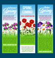 welcome spring banners flowers greetings vector image vector image