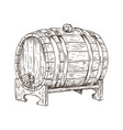 beer barrel vintage keg sketch vector image vector image