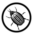 Bug button on white vector image vector image