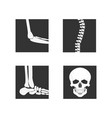 medical orthopedic of set vector image vector image