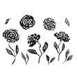 set hand drawn black ink rose or peony flowers vector image vector image