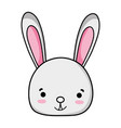 smile rabbit head wild animal