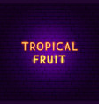 tropical fruit neon text vector image vector image