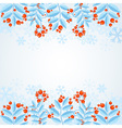 winter decorative frame with rowan berries vector image vector image
