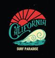 california vintage printsurf graphic vector image