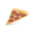 pizza piece isolated food icon italian fastfood vector image vector image