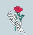 rose flower in skeleton hand vector image