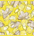 seamless pattern with ginger vector image