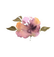 watercolor flower hand drawn colorful beautiful vector image vector image