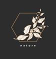 branch tea bush design art line symbol vector image