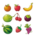 Fruits vector image vector image
