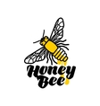 Hand-drawn bee logo for honey products vector image vector image