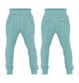 Mens blue sweatpants