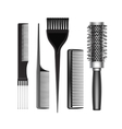 Set of Grooming Hair Brush Comb Professional Tools vector image vector image