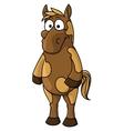Cartoon horse character vector image