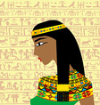 Ancient Egyptian woman profile over a background vector image