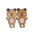 cute animal couple bear together vector image vector image