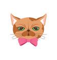 cute cat in pink bow tie funny cartoon animal vector image vector image