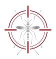 Fever mosquito species aedes aegyti in red aim
