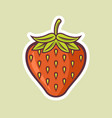 strawberry fruit colored vector image vector image