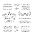 vintage ornaments - collection hand drawn vector image