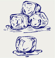 Bunch of ice cubes vector image vector image