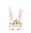 bunny cute cartoon character for birthday baby vector image