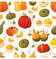 colorful pumpkin pattern vector image vector image