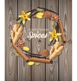 Confectionery spices vector image
