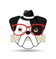 hipster face bulldog with bone and glasses hat vector image